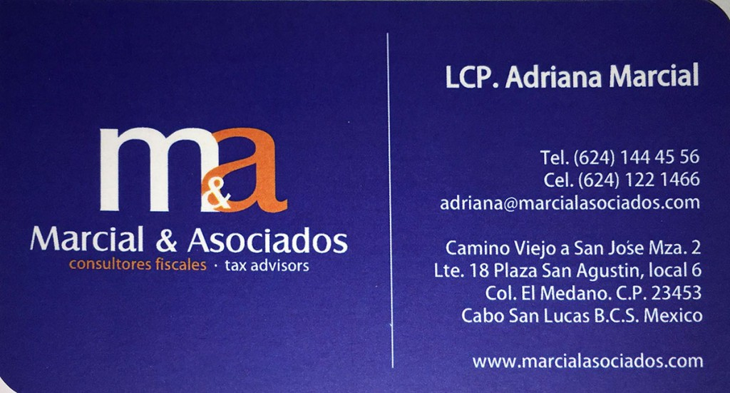 adriana-marcial-27-jan-15_bus-card
